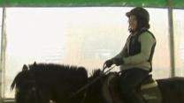 South Korean Horse Therapy