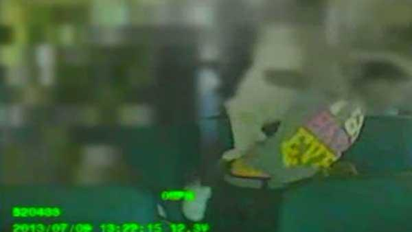 School bus fight recorded by school bus video camera; Driver doesn't intervene
