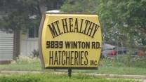 Mt. Healthy Hatcheries Linked To Salmonella Outbreak