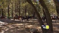 Yosemite National Park future debated in Oakhurst