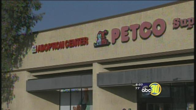 Cat House on the Kings donation jar stolen from Petco