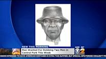 Police: Suspect Sought In Violent Central Park Robbery Spree