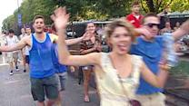 Mob of music lovers attempt to break into Lollapalooza