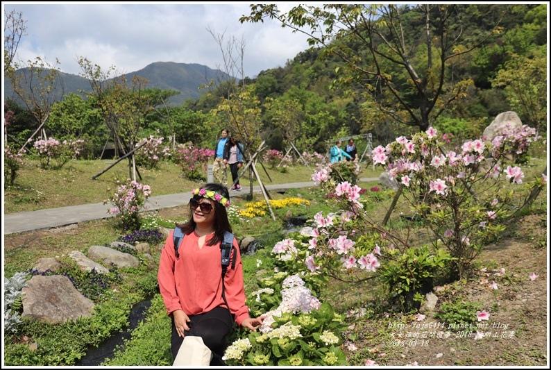 陽明山櫻花季-2018-03-19.jpg