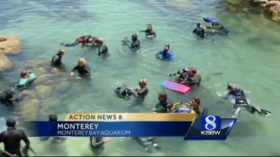 Day of Discovery for kids with disabilities at Aquarium