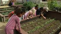 Berkeley school's gardening program could be cut