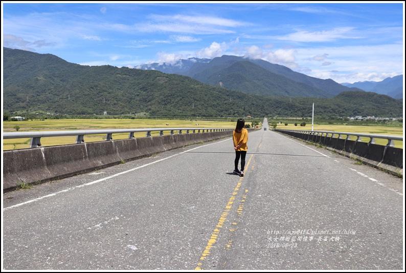 長富大橋(大地色塊)-2018-06-05.jpg