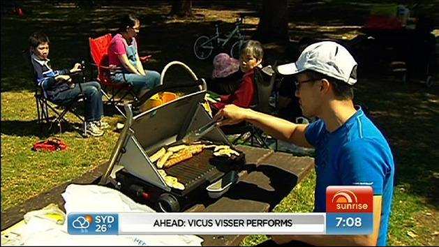 Australia Day parties well behaved