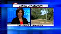 Canine Crackdown