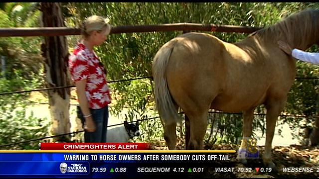 Horse owners warned after tail cut off local animal