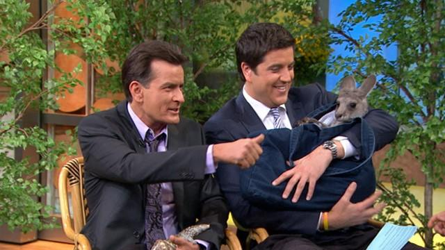 Jack Hanna Brings an Anteater, a Dingo and a Skink to 'GMA'