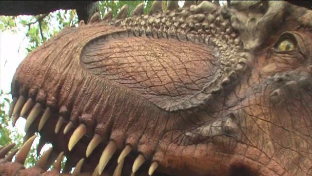 ABC Action News: Weekend Edition: Lowry Park Zoo DinoQuest