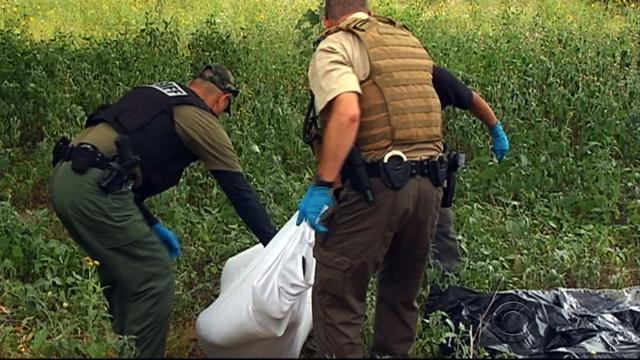 Illegal immigrants crossing into U.S. are dying from summer heat