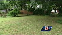 Poisoned dogs in Ardmore
