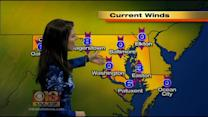 Chelsea Ingram Has Your Late Sunday Night Forecast
