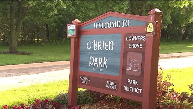 Police: Lightning killed teenager in Downers Grove