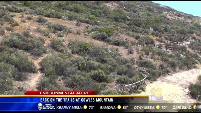 Back on the trails at Cowles Mountain
