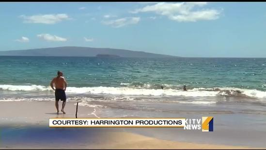 Witnesses recount Maui shark attack