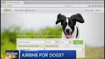 Airbnb for dogs?