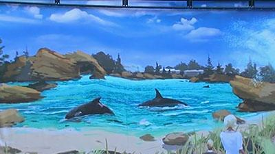 Sea World Announces New Killer Whale Habitat
