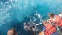 Coast Guard Saves Leatherback Turtle Trapped in Fishing Gear