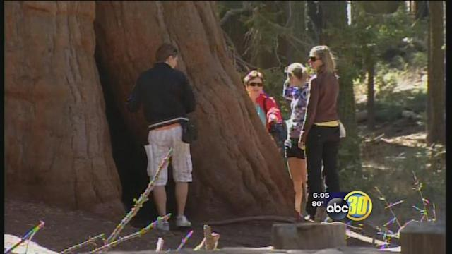 Sequoia, Kings Canyon national parks reopen