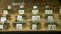 IL Senate OKs medical marijuana, sends bill to Gov. Quinn
