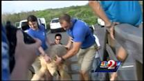 14 sea turtles released into water along Brevard County coast