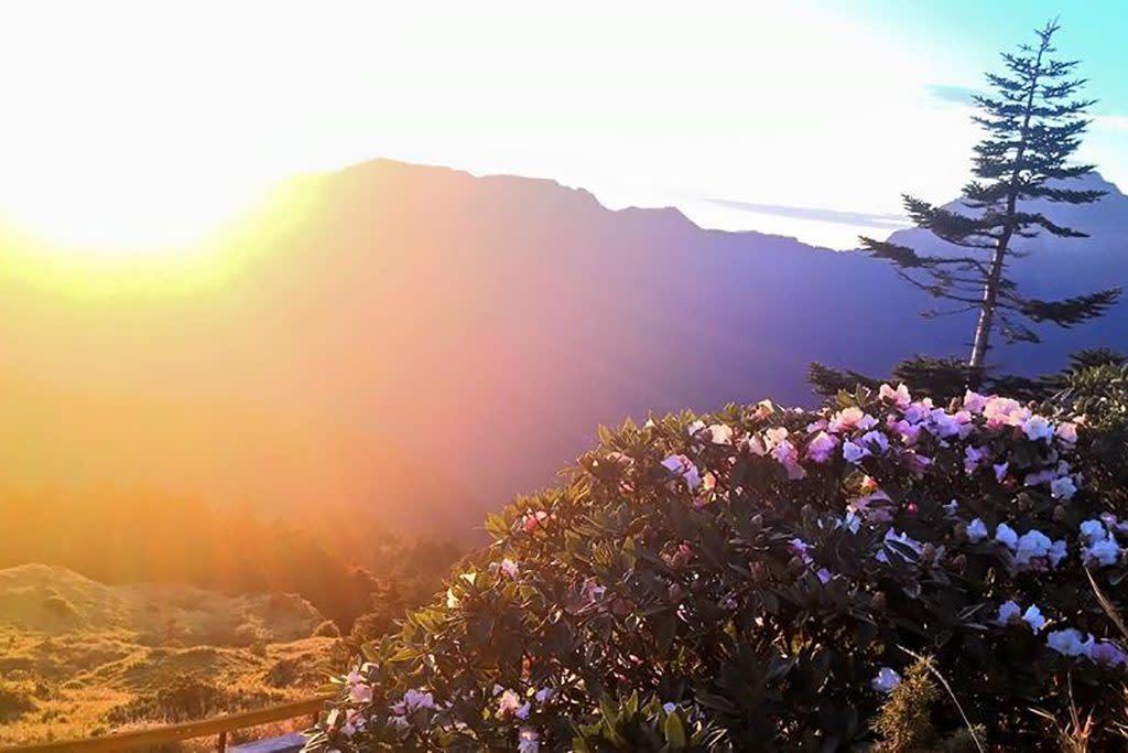 原鄉部落旅遊|春陽部落 圖片來源:Tripbaa!達人帶路