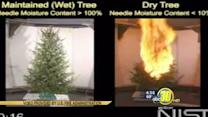 Tips to prevent Christmas tree fires