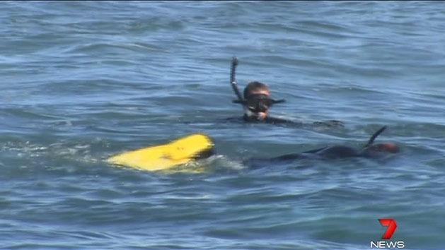 Search for snorkeller called off