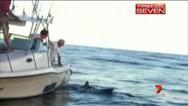 Fishermen's close encounter with shark