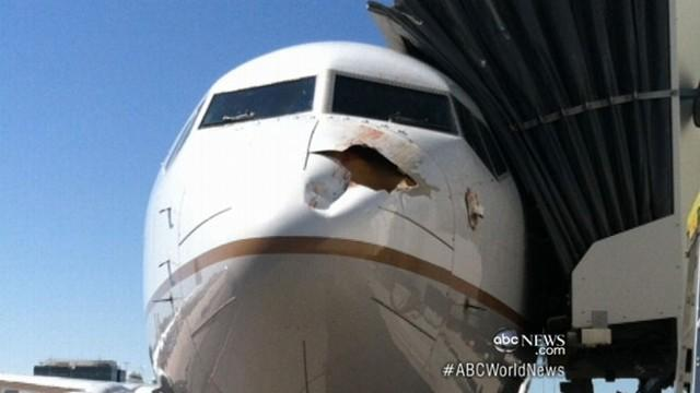 Plane Collides With Bird, Lands Safely