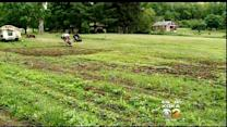 Police Seek Suspects After Veterans' Crops Poisoned On Local Farm