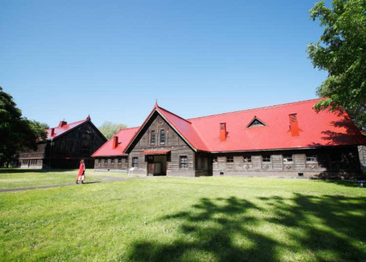 ▲札幌農學校建築物紅色的屋頂相當搶眼