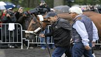 American Pharoah In NY Ahead Of Triple Crown Bid
