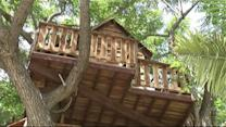 Family Fights to Keep $16K Treehouse Built in Memory of Dad
