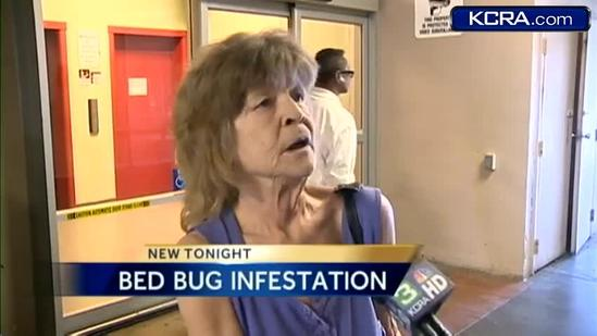 Stockton seniors complain of bed bug infestation
