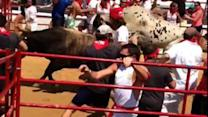 Watch: The Great Bull Run brings Spanish tradition to U.S.