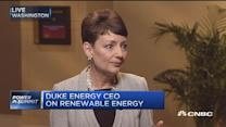 Duke Energy CEO:  Eye on renewable energy