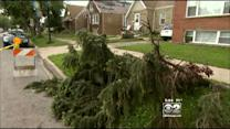 Tornado Likely Caused Damage In South Suburban Summit