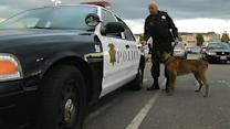 Richmond K-9 poisoned while cop's home is robbed