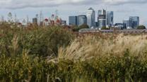 Canary Wharf Thriving Post-Transformation