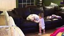 Baby Shares a Cookie With Her Best Friend