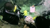 Florida couple get married underwater