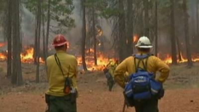 Northeast California Wildfire Destroys 8 Homes