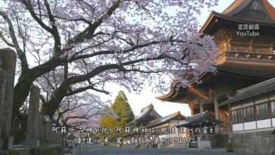 暴雨不停 熊本「阿蘇神社」遭淹沒
