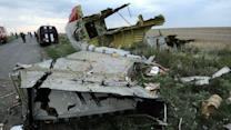 MH17: Surface-to-Air System Needed to Shoot Down Jets
