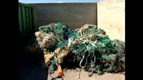 More marine debris found