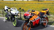 2013 Honda CBR 600RR 本田RR魂 加菲貓教室
